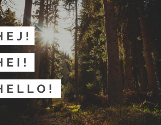 Hej! Hei! Hello!