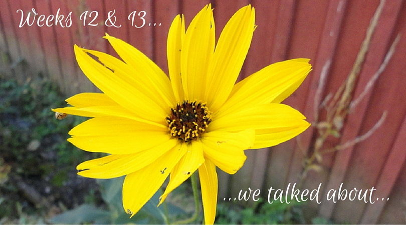 Weeks 12 and 13 – And We Talked About…
