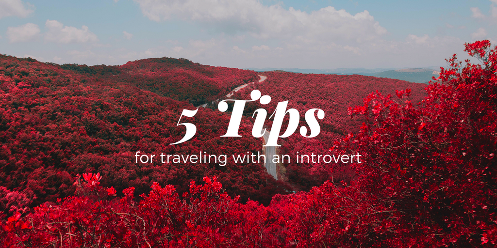 5 Tips For Traveling With An Introvert