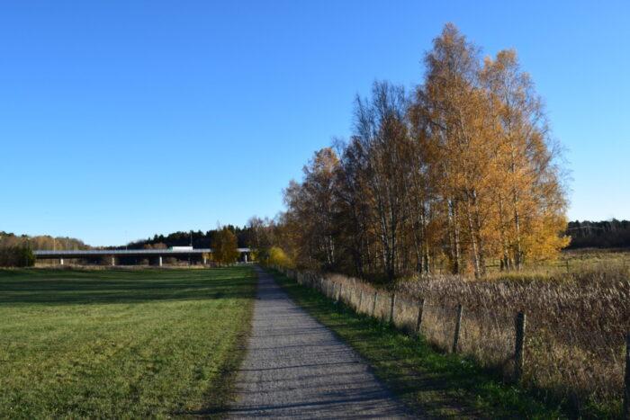 Igelbäcken Nature Reserve, Igelbäckens naturreservat, Stockholm, Sweden, Sverige. Kista