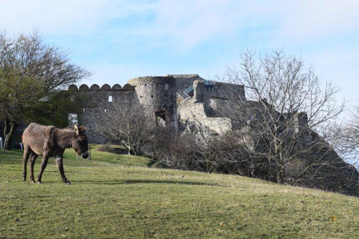 Hrad Devin, Devin Castle, Bratislava, Slovakia