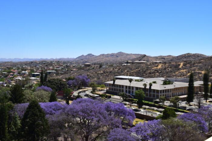 Parliament Gardens, Lizard, Windhoek, Namibia
