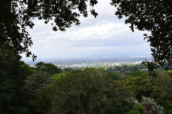 Jardin botanique national Kirstenbosch, Le Cap, Afrique du Sud, Montagne de la Table