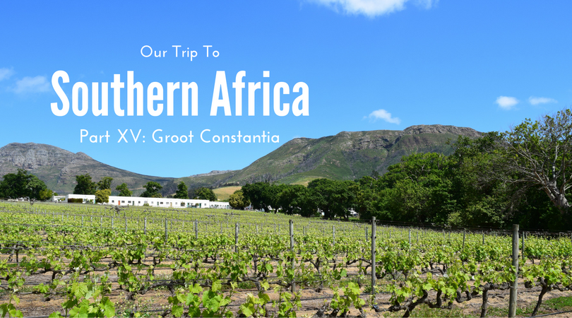 Southern Africa, Part XV – Groot Constantia, South Africa