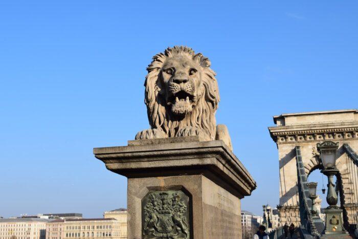 Széchenyi Chain Bridge, Széchenyi lánchíd, Lion, Budapest, Hungary