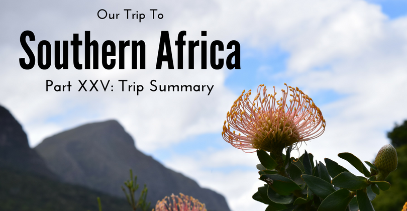 Our Trip to Southern Africa, South Africa, Namibia, Qatar
