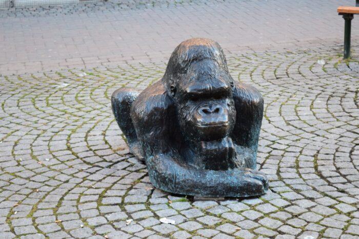 Gorilla, Karlstad, Sweden