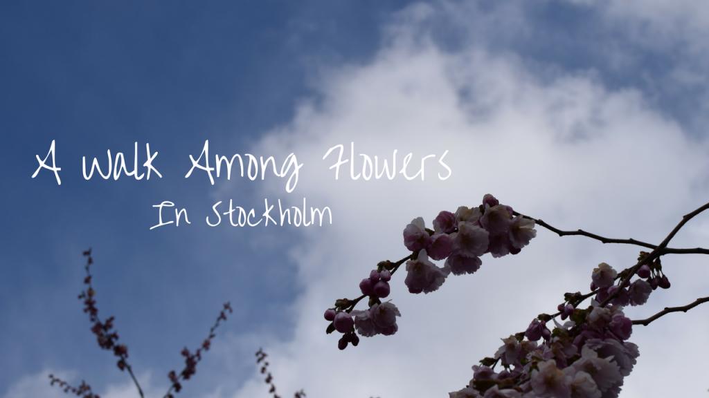 A Walk Among Flowers, Stockholm, Sweden