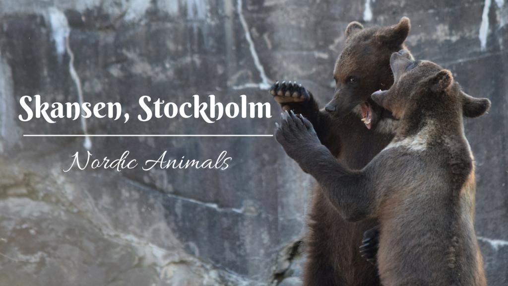 Nordic animals, Skansen, Djurgården, Stockholm, Sweden