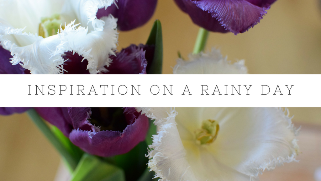 Rainy Wednesday – Time for Some Inspiration