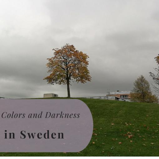 Fall in Sweden, Kista, Stockholm
