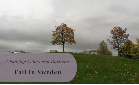Fall in Sweden, Kista, Stockholm