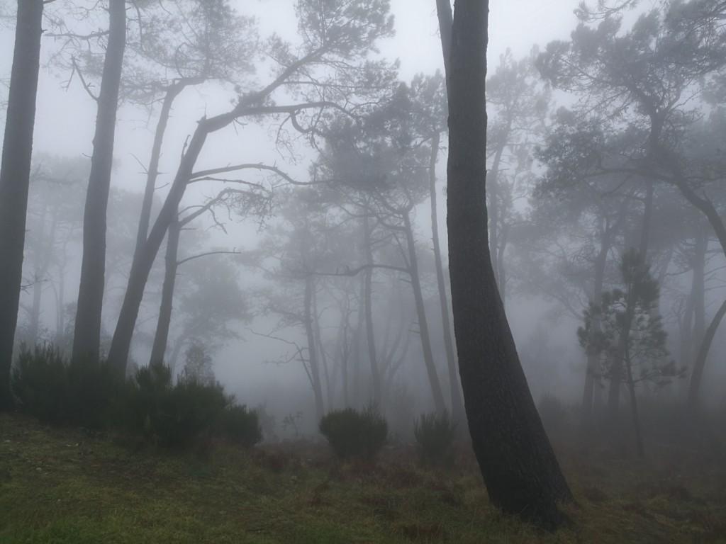 Pico do Arieiro, Madeira, 2018, Portugal