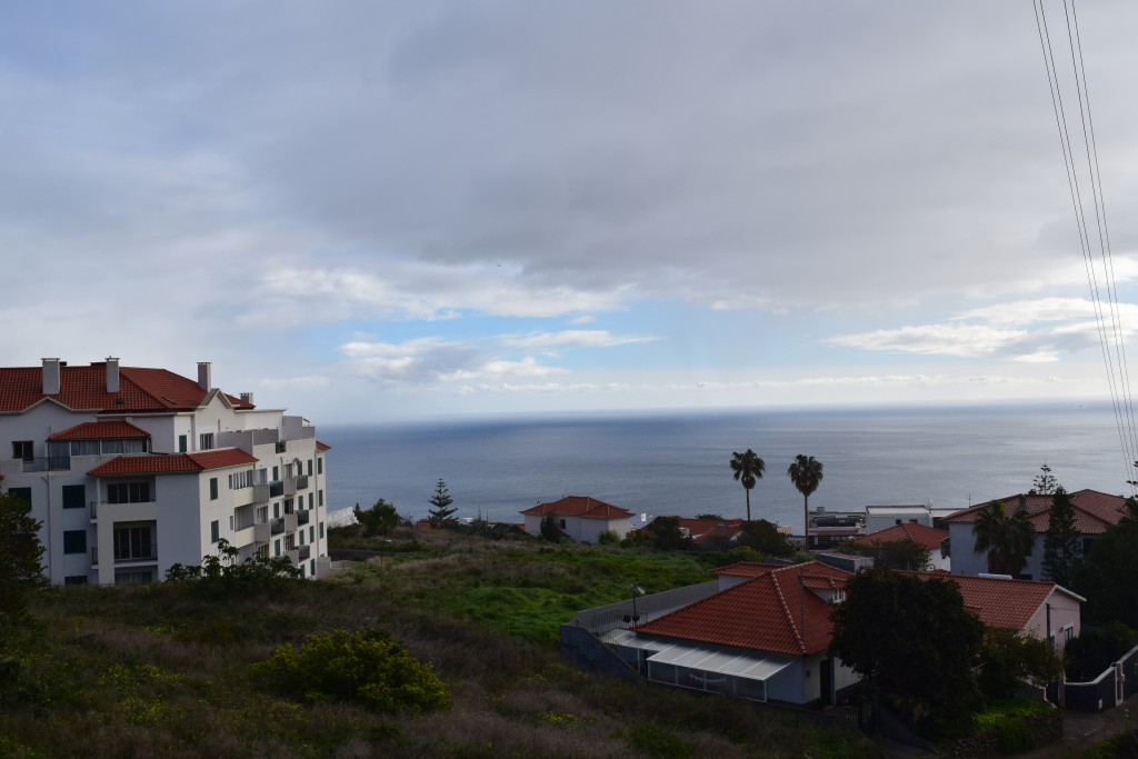 Madeira, 2018, Portugal, Stuck in Garajau
